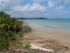 p1090823-frangipani-beach-cape-york-tip
