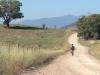 Mountain Creek Road