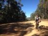 Climbing the Boboyan Road