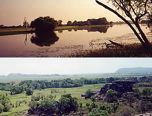 Top: Yellow Waters, 19/8/00 Bottom: Ubiri, 22/8/00 Kakadu NP