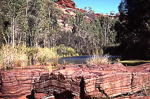 Rock strata in Karajini NP