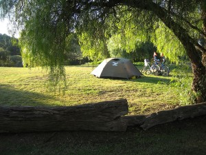 Lovely campsite at Yacka in the Clare Valley