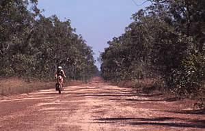 Gaye on the Kalumburu Road