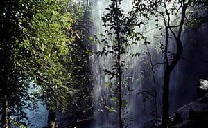 Imerton Falls (near Mitchell Falls)