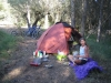 Olive grove camp in Spain