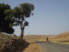 Wide open spaces up high in the Middle Atlas mountains