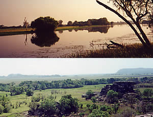 Top: Yellow Waters, 19/8/00 Bottom: Ubiri, 22/8/00 Kakadu NP