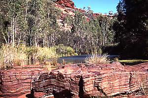 Rock strata in Karajini NP