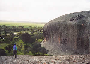 Pildappa Rock (near Poochera)