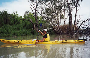 Kayaking on the Murray tributaries. Berri