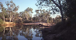 Camping on the Gibb River