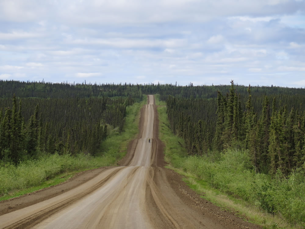 and freewheeled down, the roller coaster hills of the boreal forest,