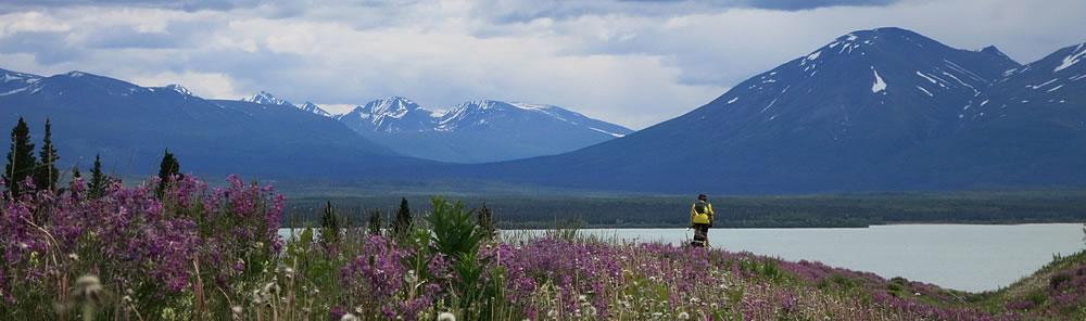 Video: Alaska – thank you and farewell ….