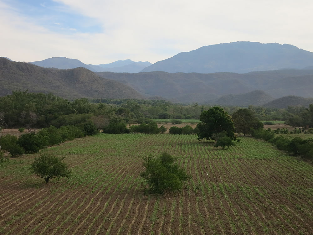 We descended to farmland at around 600m before commencing the last big ascent into Oaxaca