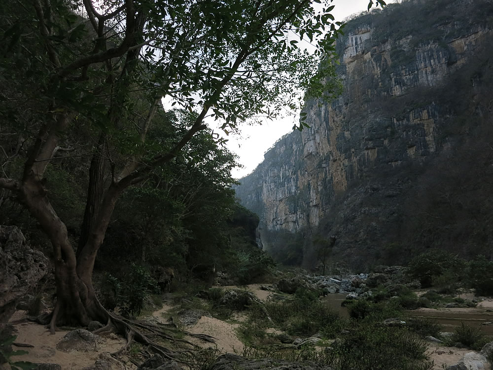 Descend around 800 steps and you can explore the canyon, river and Cascada de Aguacera waterfall